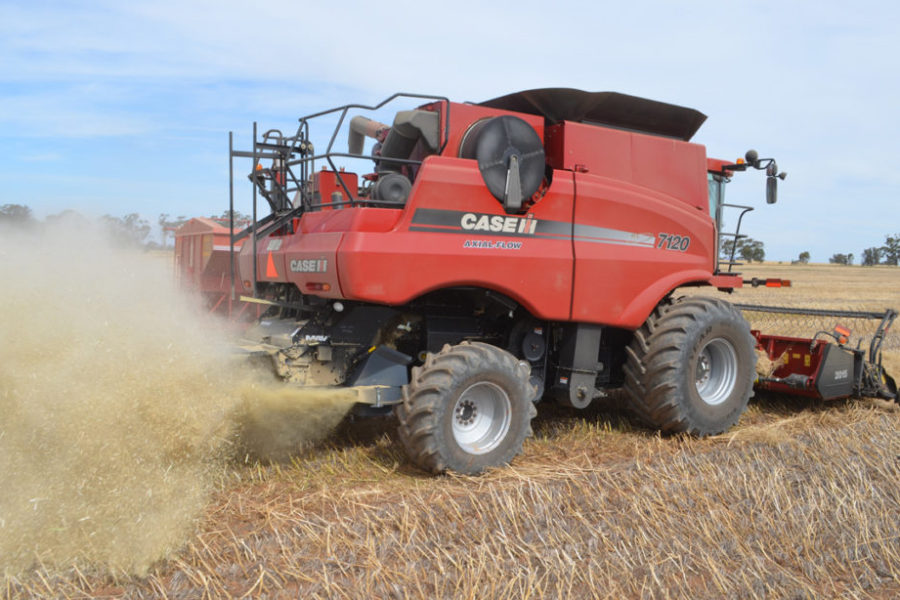 Lyndoch Motors and Seed Terminator working together image